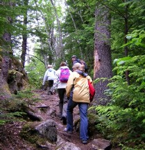 Hikers enjoy nature -- and health benefits.